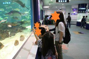 サンピアザ水族館8