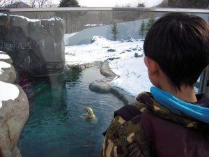 動物園11