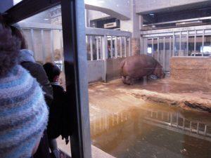 動物園14